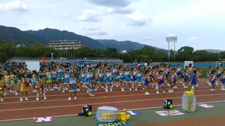 サイドライン_オブラディ (5).JPG